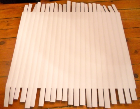 strips of paper